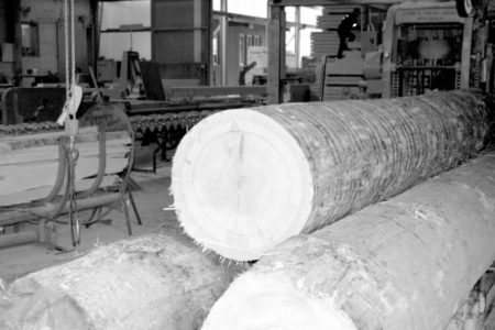 Beratung Dienstleistungen Schneider Holzbau Ag
