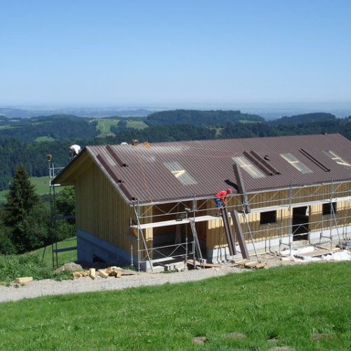 Referenzen Zimmerei Neubau Alpstall 02